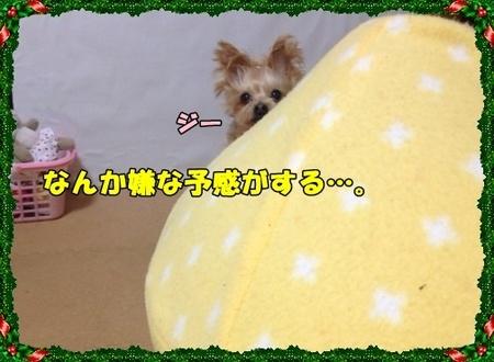 20121223①.JPG