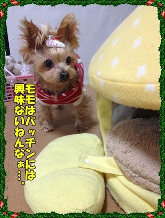 20121223②.JPG