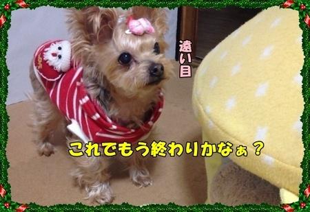 20121223⑤.JPG