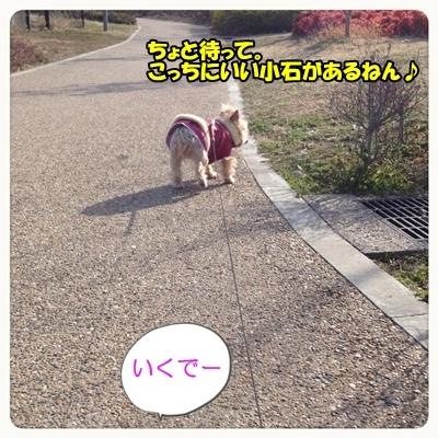 20130224_4.JPG
