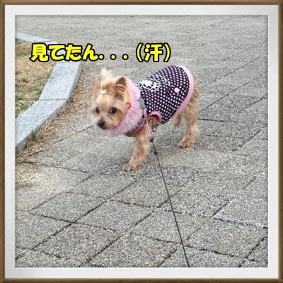 20130302_2.JPG