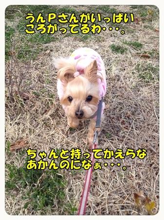 20130316_10.JPG