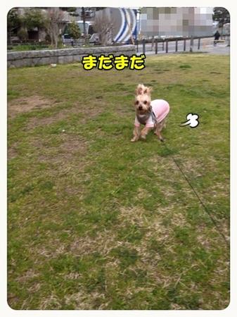 20130318_1.JPG