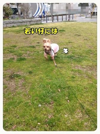 20130318_2.JPG