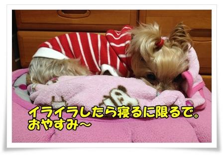 20130327_7.JPG