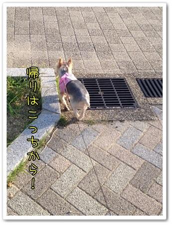 20131015_7.JPG