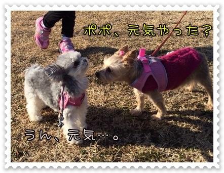 20140119_1.JPG