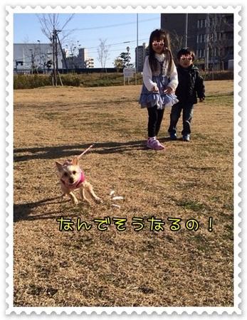 20140119_5.JPG