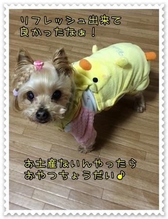 20140322_00.JPG