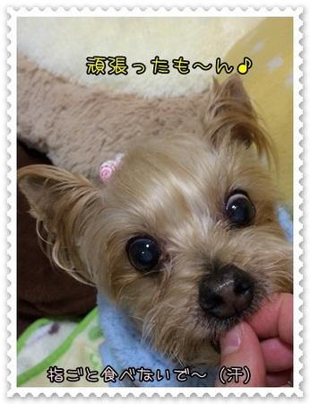20140327_4.JPG
