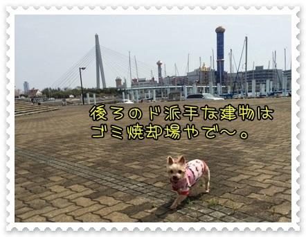 20140421_3.JPG