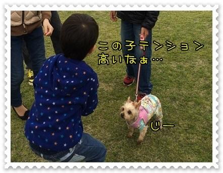 20140424_9.JPG