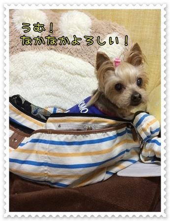 20140503_6.JPG