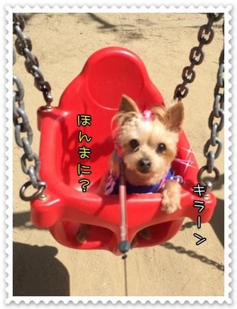 20140511_4.JPG