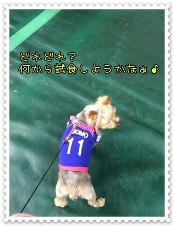 20140513_4.JPG