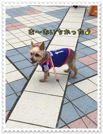 20140513_8.JPG