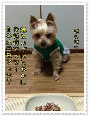 20140708_2.JPG