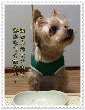20140708_3.JPG