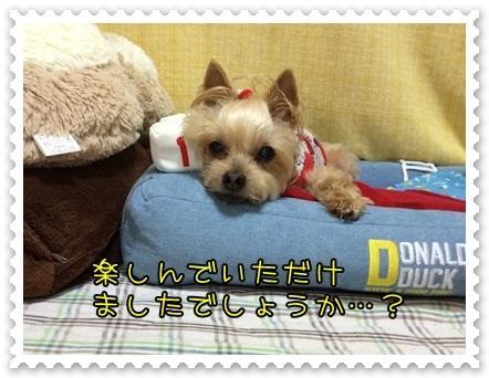 20140713_8.JPG