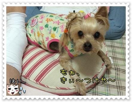 20140814_7.JPG