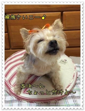 20141015_5.JPG