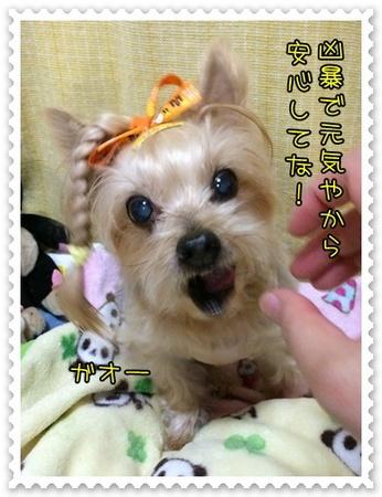 20141021_10.JPG