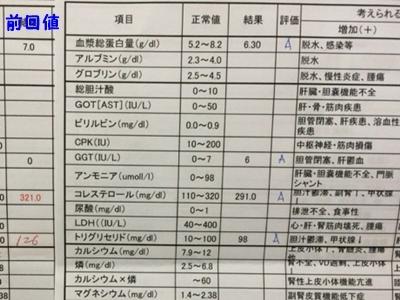 20141213_44.JPG