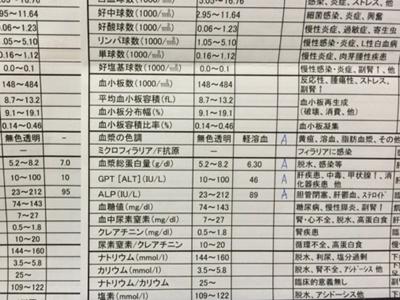 20141213_444.JPG