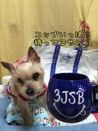 20150614_4.JPG