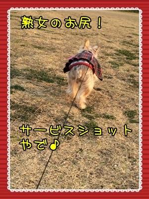 20160305_1.JPG