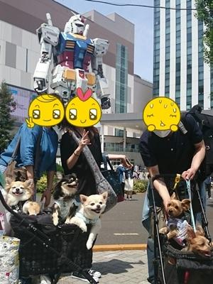 20160510_00.JPG
