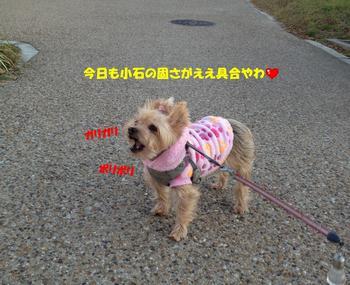 IMG_222666.jpg