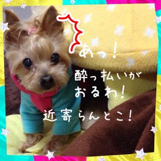 image-20130125084834.png