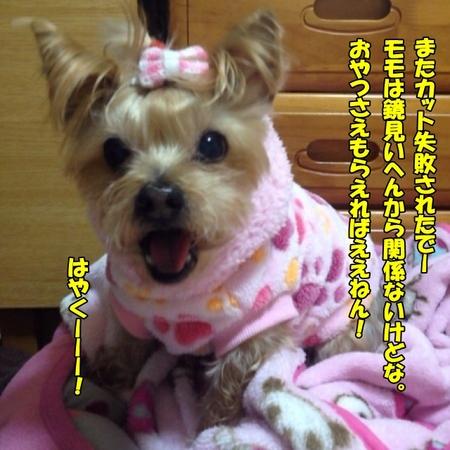 20120120_2.JPG