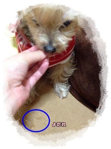 20121218⑤.JPG