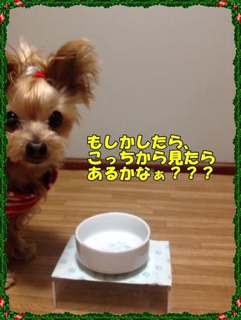 20121220⑤.JPG
