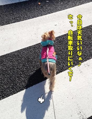 20121229②.JPG