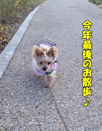 20121231①.JPG