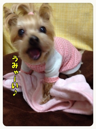 20130319_7.JPG