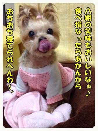 20130319_9.JPG
