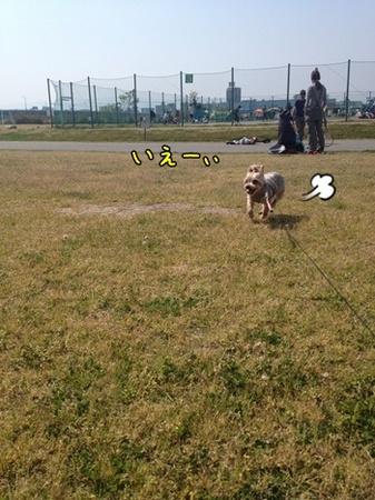 20130518_3.JPG