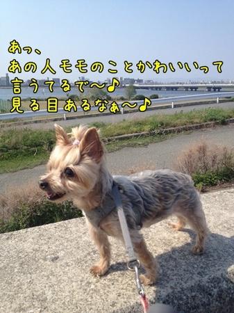 20130525_3.JPG