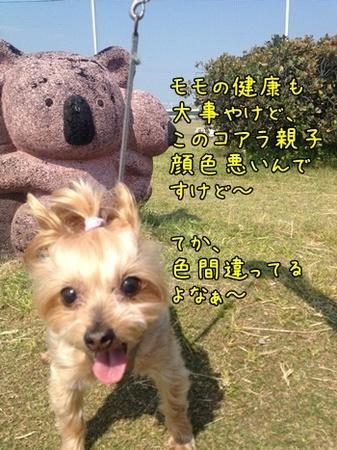 20130525_4.JPG