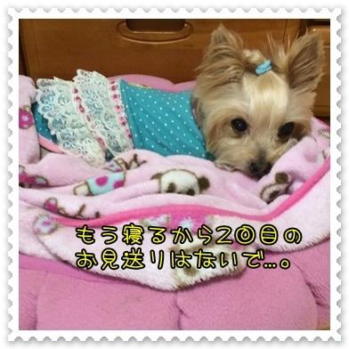 20131113_3.JPG