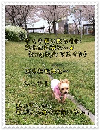20140409_1.JPG