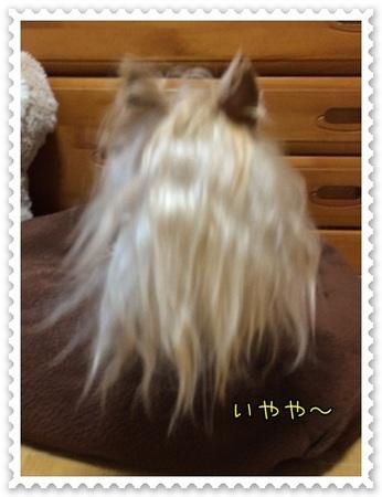 20140414_3.JPG