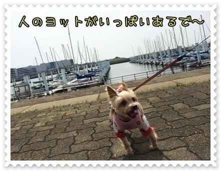 20140421_1.JPG