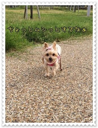 20141013_2.JPG